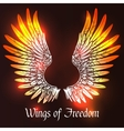 Wings Sketch vector image vector image
