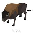 bison icon isometric style vector image