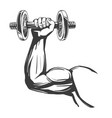 arm bicep strong hand holding a dumbbell icon vector image vector image