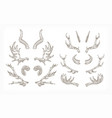 collection horns various animals isolated on vector image