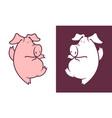 dancing pig character vector image vector image