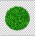 grass circle 3d green plant grassy round field vector image vector image