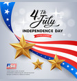 independence day flag america golds star vector image