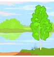landscape trees and river low poly vector image