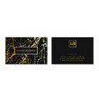 luxury business cards banner and cover with vector image vector image