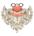 Santa mask White beard glasses and nose vector image