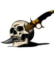 skull with a knife and white vector image vector image