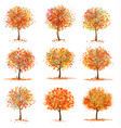 big set autumn inspired trees with colorful vector image