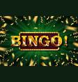 bingo casino banner vector image vector image