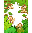collection monkey silly face in the forest vector image vector image