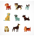 Dogs icons and vector image vector image