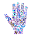 Floral palm hand drawn vector image vector image