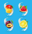 fruit yogurt set mango lemon watermelon vector image vector image