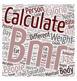 How To Calculate BMR text background wordcloud vector image vector image