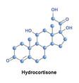 hydrocortisone hormone medication vector image vector image