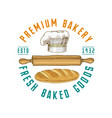 rolling pin and chef with loaf or kitchen cooking vector image