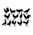 rooster activity silhouettes vector image