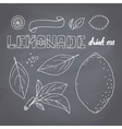 Set of hand drawn lemonade ingredients vector image