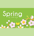 spring background with soft flowers bees vector image
