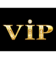 Vip golden card vector | Price: 1 Credit (USD $1)