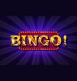 bingo banner vector image