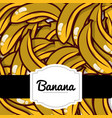delicious banana fresh fruit label pattern vector image vector image