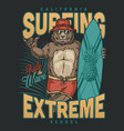 extreme surfing vintage print vector image