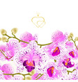 floral border seamless background branch orchids vector image vector image