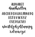 handdrawn latin calligraphy brush script with vector image vector image
