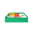 japanese food in green lunchbox on white vector image vector image
