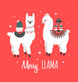 merry christmas greeting card with cute lamas vector image