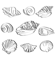 Set seashells outline vector image