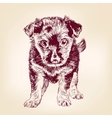 puppy dog hand drawn llustration vector image