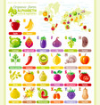 alphabet food infographics fruit vegetable vector image