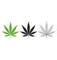 black and green cannabis leaf logo design vector image