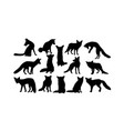fox silhouette set vector image