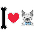 I love French bulldog hipster with blue tie bow vector image vector image