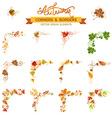 set of autumn leaves design elements vector image vector image