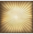 vintage background with rays vector image vector image
