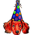 a cute head puppy with party hat vector image vector image