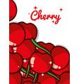 cherry fruit juicy sweet poster vector image vector image