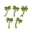 coconut tree design template vector image vector image