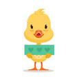 little yellow duck chick holding blue banner with vector image vector image
