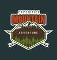 mountains travel outdoor adventure camping vector image vector image