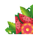 tropical exotic watermelon flower foliage vector image vector image
