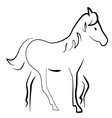 silhouette horse vector image