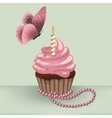Birthday cupcake with burning candle and butterfly vector image