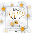 spring sale banner with realistic chamomile flower vector image vector image
