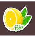 Bio lemon tag vector image