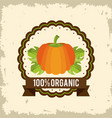 colorful logo of organic food with pumpkin vector image vector image